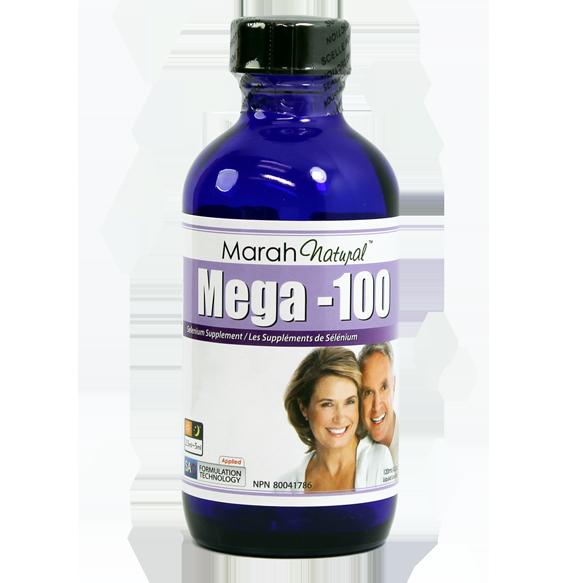 Mega-100 (메가백)